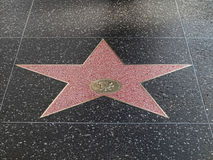 Hollywood star Royalty Free Stock Image