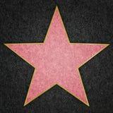Hollywood stjärna Royaltyfria Bilder