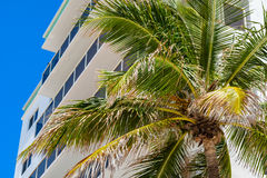 Hollywood strand Florida royaltyfri fotografi