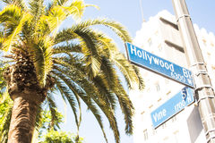 Hollywood and Vine Stock Image