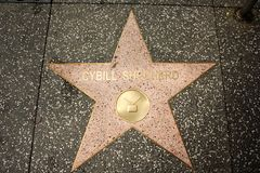 Hollywood Walk of Fame - Cybill Shepherd Stock Photos