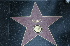 Hollywood Walk of Fame, sting Stock Images