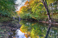 Holne Bridge on Dartmoor. Autumn colour on the river Dart on Dartmoor National Park in Devon Royalty Free Stock Photo
