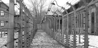 Holocaust Royalty-vrije Stock Afbeeldingen