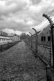 Holocauste Auschwitz commémoratif - Birkenau - Pologne photo libre de droits