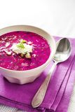 Holodnik - traditional Lithuanian Russian, Ukrainian, Belorussian, Polish cold beetroot soup. With cucumber, boiled eggs and greens in white bowl on purple stock photography