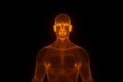 Holograma masculino del ser humano 3D Wireframe en el movimiento Representación agradable 3D Fotografía de archivo