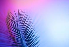 Holographic leaves. Concept art. Minimal surrealism background.  stock image