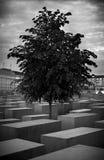 Holokausta pomnik Berlin Fotografia Royalty Free