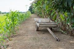 Holownik drewno w gospodarstwie rolnym obrazy royalty free