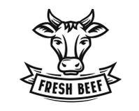 Holstein cow portrait Royalty Free Stock Photos