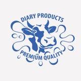 Holstein krowy uśmiechnięty portret Zdjęcia Royalty Free