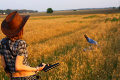 Holster hunting rewards to search and capture Royalty Free Stock Image