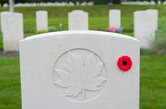 Holten kanadyjski wojenny cmentarz Obraz Stock