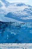 Holten vormende Gletsjer royalty-vrije stock afbeelding