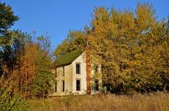 Holuse a abandonné dans les bois Photographie stock
