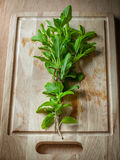 Holy basil herbs on wood chopping block Stock Photo