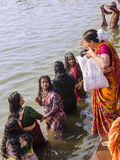 Holy bath in the river Ganges. Women in colorful saries taking a holy bath in the waters of the holy river Ganges Royalty Free Stock Images