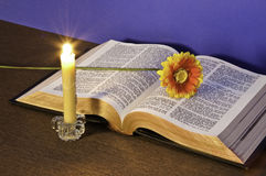 The Holy Bible. A flower and a candle Stock Photo