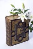 Holy Bible. Books christianity  religions gospels wisdoms flower Stock Images