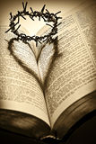 Holy Bible and The Crown of Thorns. The Crown of Thorns casting a heart-shape shadow on the Holy Bibbe Royalty Free Stock Images