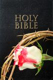 Holy bible and crown of thorns with  rose Stock Photo