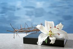 Holy Bible, crown of thorns and white lily. On light background royalty free stock photo