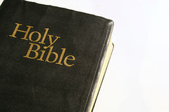 Holy Bible on a white background. Shot of Holy Bible on a white background royalty free stock image