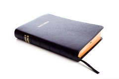 Holy Bible on white with Copy Space Stock Photography