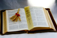 Holy Bible; Word of God with shaft of wheat. Vintage old Holy Bible shaft of wheat presented to represent enlightenment Stock Images