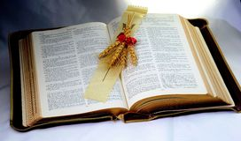 Holy Bible; Word of God with shaft of wheat. Vintage old Holy Bible shaft of wheat presented to represent enlightenment Royalty Free Stock Images