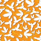 Holy birds dove seamless pattern Stock Photography