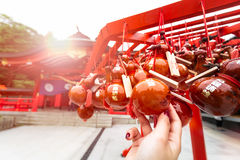 Holy calabash charm. Hanging the holy calabash for luck health fortune and goodness in Japanese belief Stock Photography