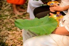 Holy Child , Ordination Summer recess Thailand. Stock Photo