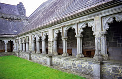 Holy Cross Abbey. Deatil of the Holy Cross Abbey in County Tipperary, Ireland royalty free stock photos