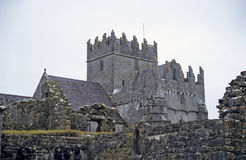 Holy Cross Abbey, Tipperary. The tower of Holy Cross Abbey in County Tipperary, Ireland stock photo