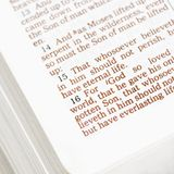 Holy doctrine. Selective focus of verses in open Holy Bible Stock Photo