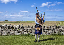 Holy Island Piper, Scotland Stock Photography