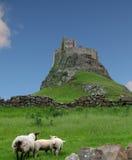 Holy Isle Lindisfarne, England. Castle on the Holy Isle of Lindisfarne in Northumberland, England Royalty Free Stock Photo