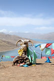 Holy Lake. Yang lake of tibet, china Stock Photos