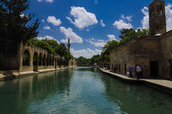 Holy Lake (Fish Lake), Urfa Royalty Free Stock Image