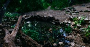 Holy Land Series - Judea Mountains - Ein Tanur Tanur spring 3 stock images