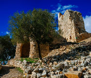 Holy land Series -Yehi`am Fortress National Park 5 Royalty Free Stock Images