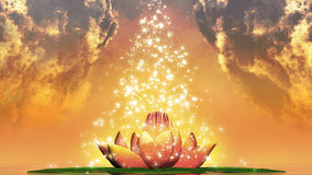 Holy Lotus Royalty Free Stock Images