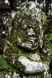 Holy monster in Bali. Hindu god head statue overgrown by vegetation Royalty Free Stock Photos