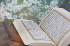 The Holy Quran. Holy book of Muslims around the world. An open page of Quran royalty free stock image