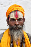 A holy sadhu yogi Stock Photography