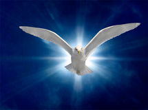 Holy Spirit 2 Stock Photography