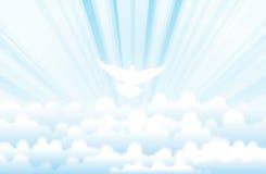 Holy Spirit. White dove prefiguring Holy Spirit flying in the heavens Stock Image
