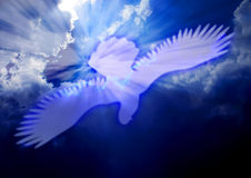 Holy Spirit dove royalty free illustration